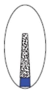 Dental Diamond Bur Taper Type(Flat)